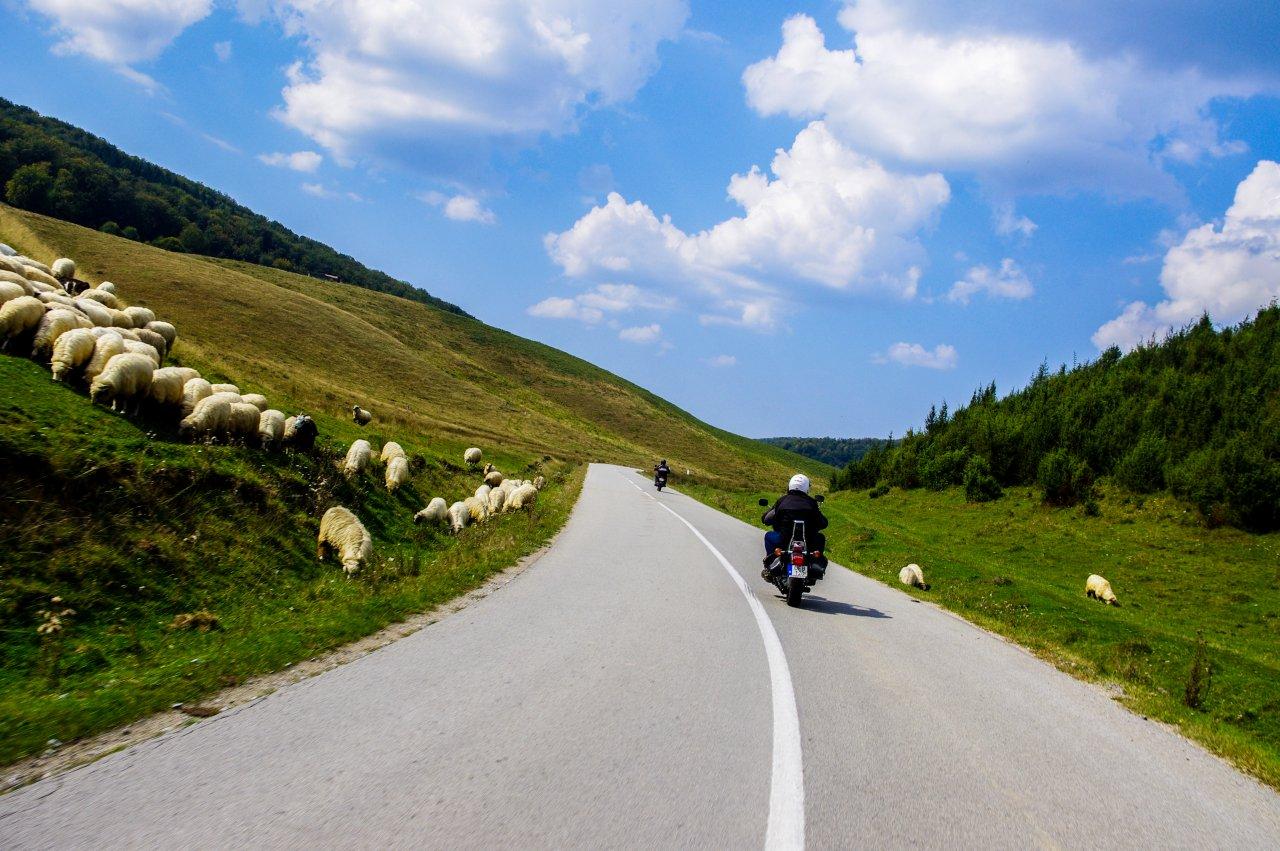Az út Erdődámos(Damis) és Biharrózsa(Rosia) között