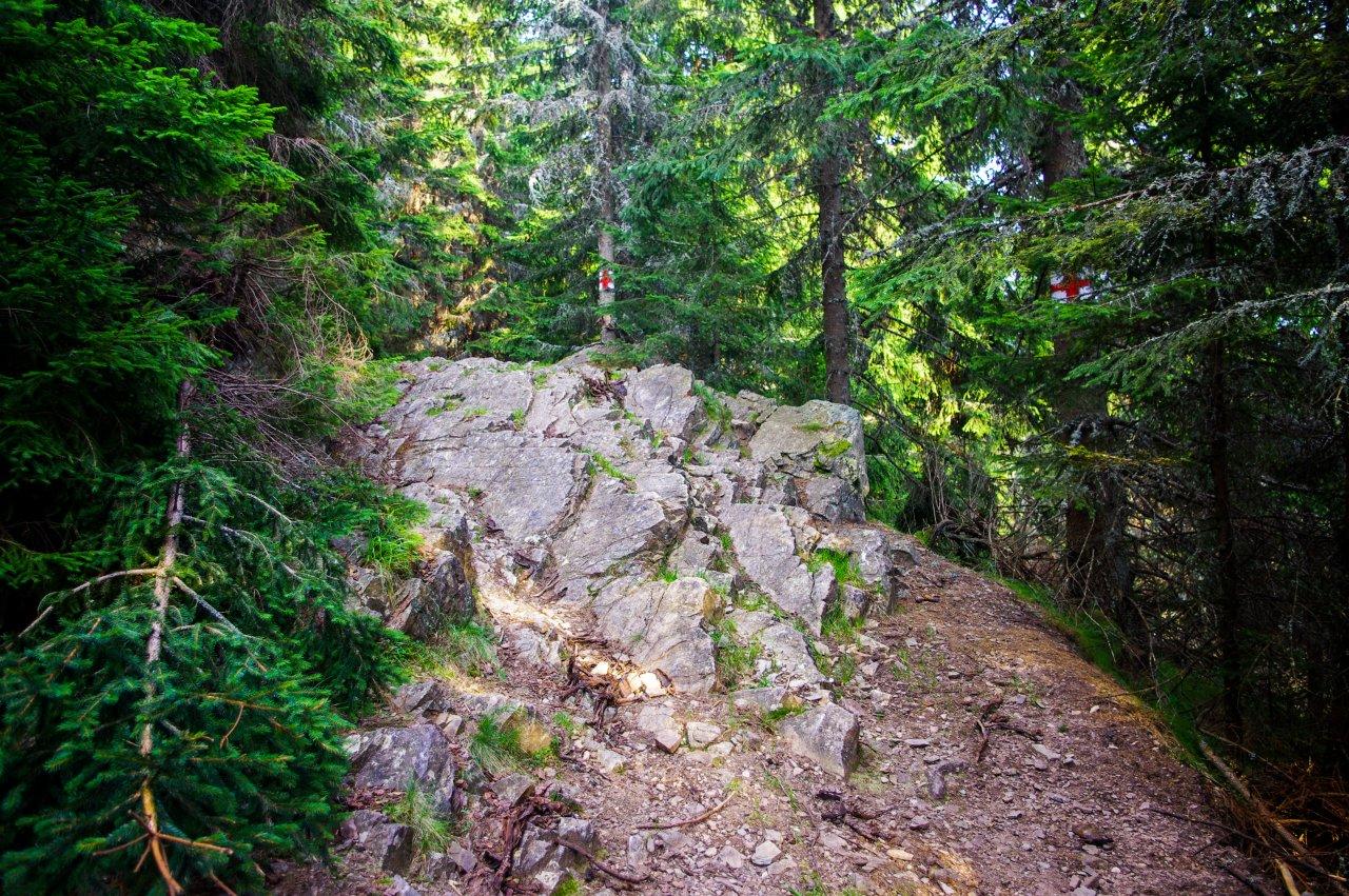 Kisebb akadályok a túristaúton