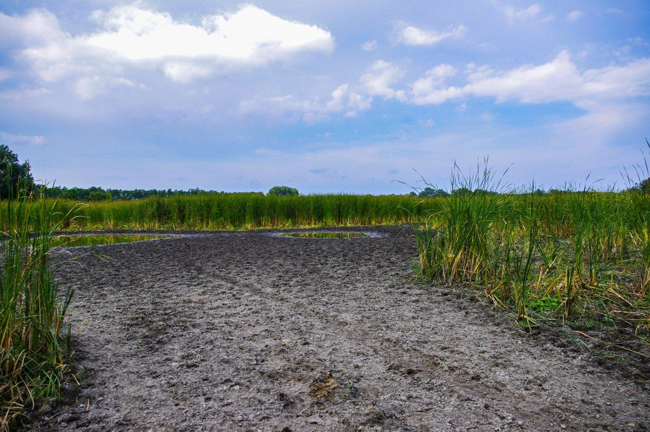 A Bodzás tó az Alföldi kéktúra mentén, a Fancsika-tó mellett.