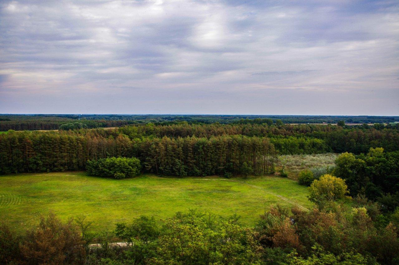 A kilátás a Fekete-erdő és Nagyvárad felé