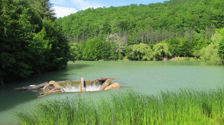 Félelmetes a Vida tó lefolyója