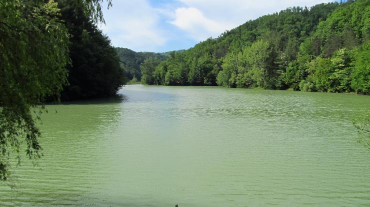 A tó vonulata folytatódik a túloldalon is a mellette lévő erdei úttal majd ösvénnyel.