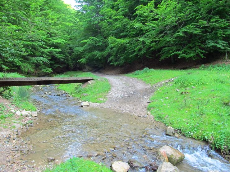 A túrista ösvényekhez vezető út