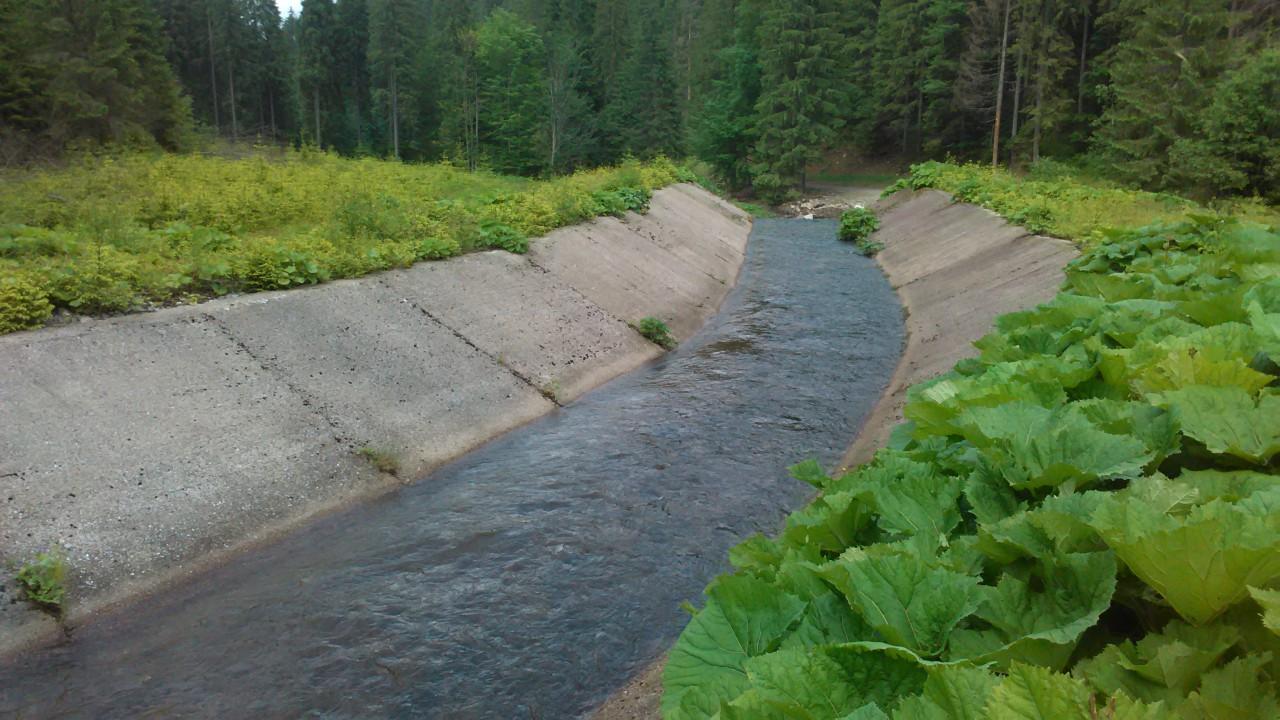 A hegy gyomrából kiáramló rendkívűl gyors sodrású patak(Közel a Cserepes-erdészházhoz, illetve a kék kereszt túrista útvonalhoz)