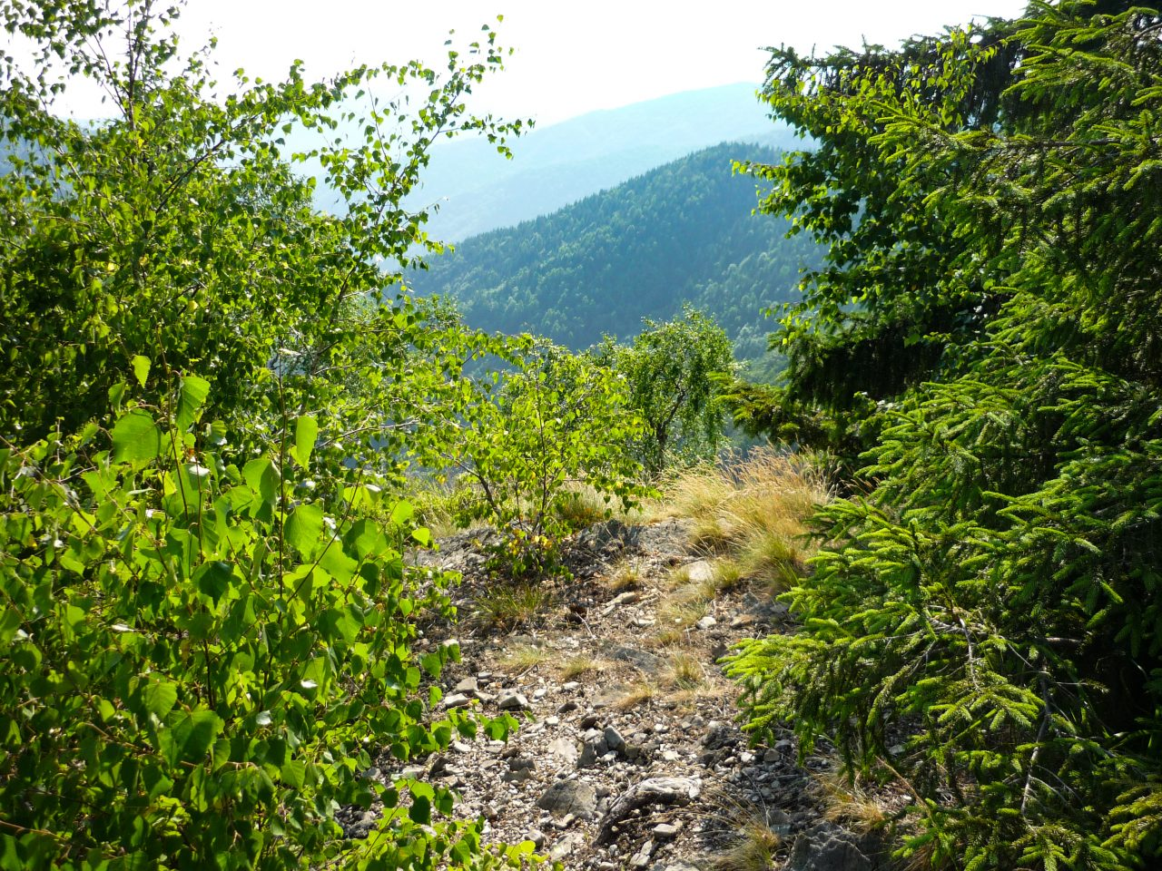 Gyönyörű a sziklafal mögötti völgy, mely egészen Vasaskőfalváig nyúlik