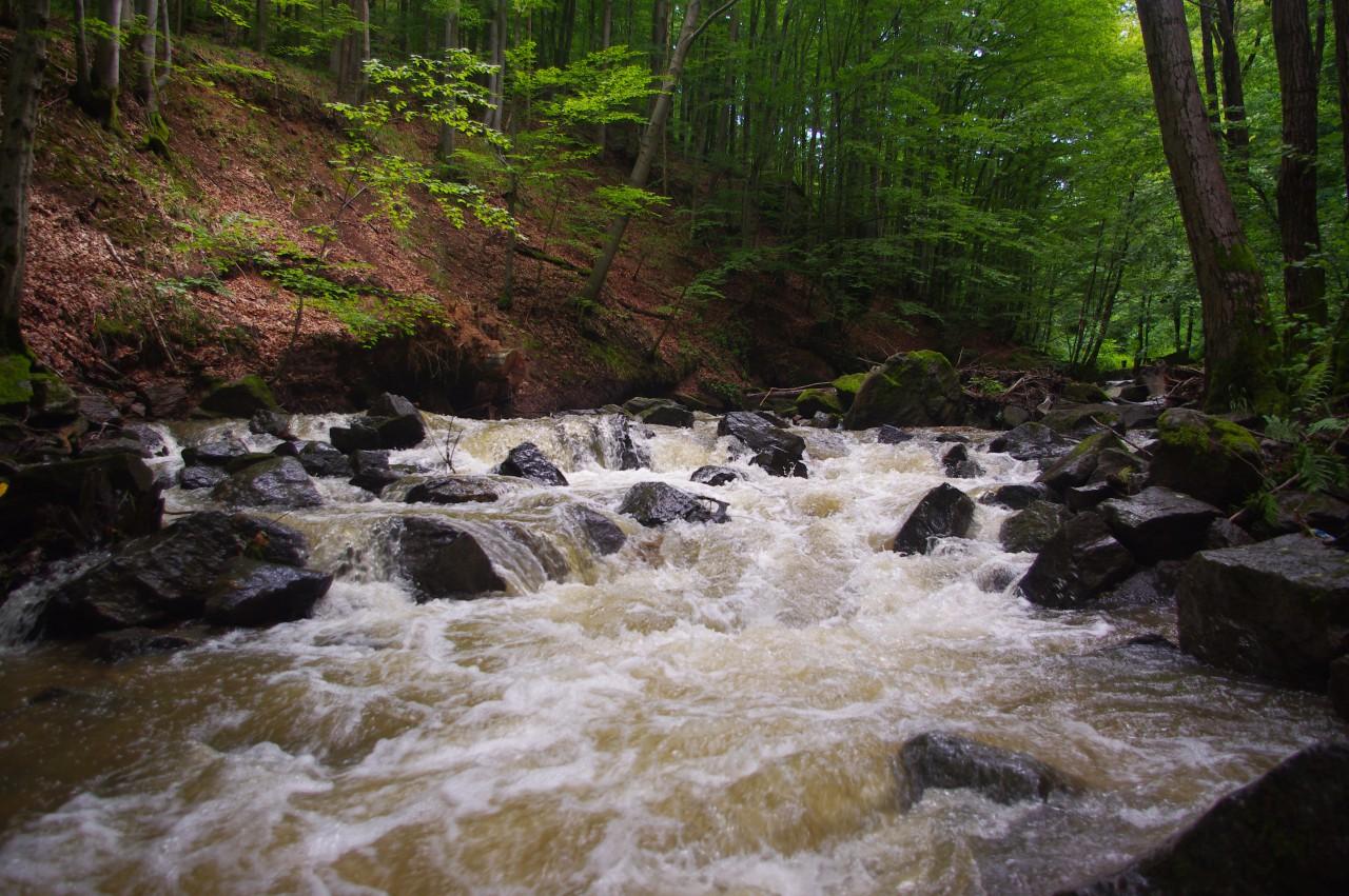 A lezúduló patak a Fekete Erdőbe-ben