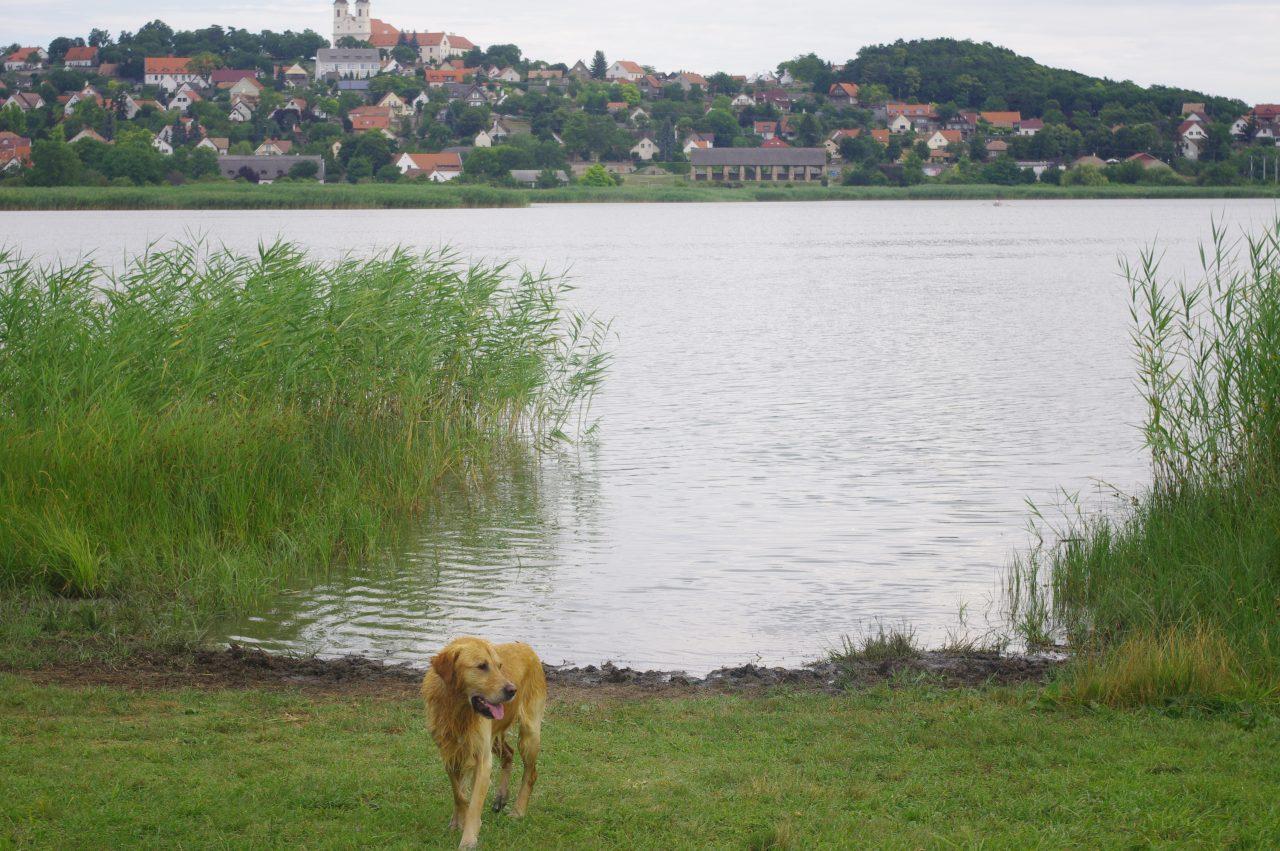 A Belső-tó