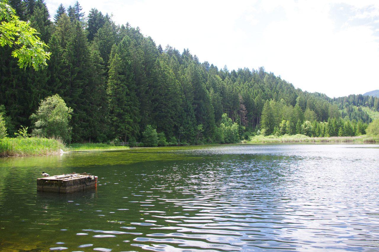 A Leonhardi-tó