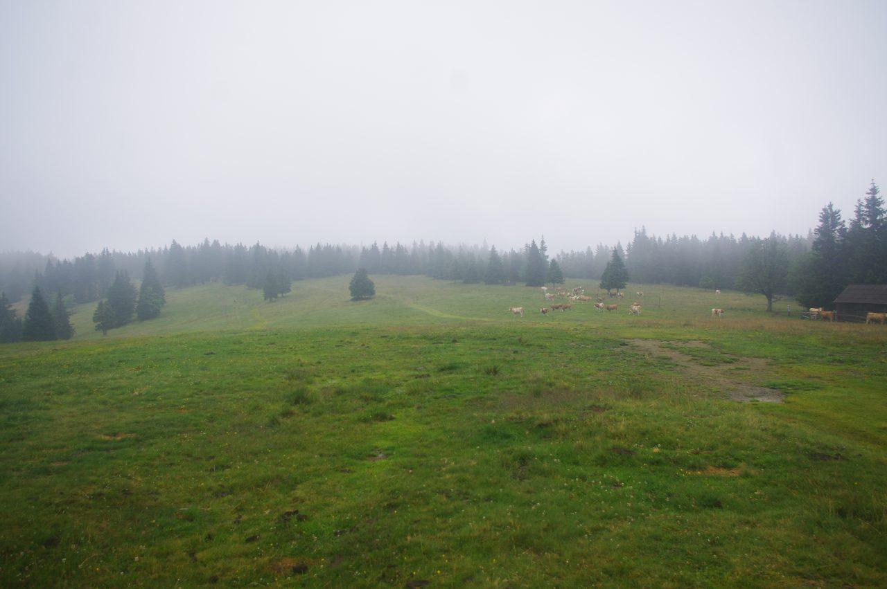 Lovrenška jezera túraútvonal