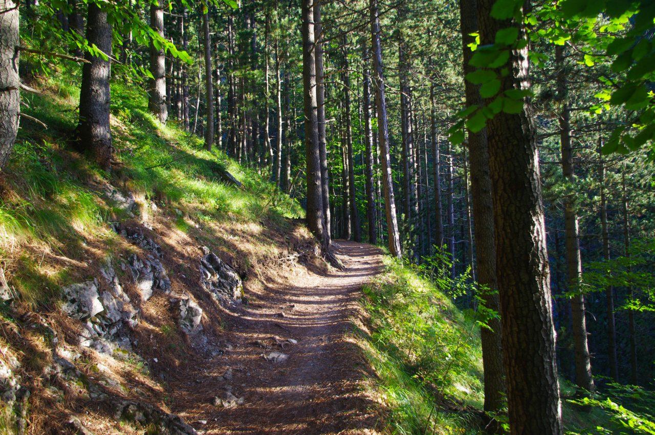 Az Olümposz csúcsa felé vezető turista út