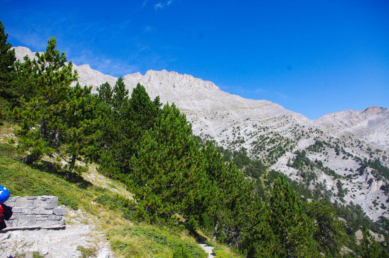 Háttérben a Mytikas csúcs 2918 méteren