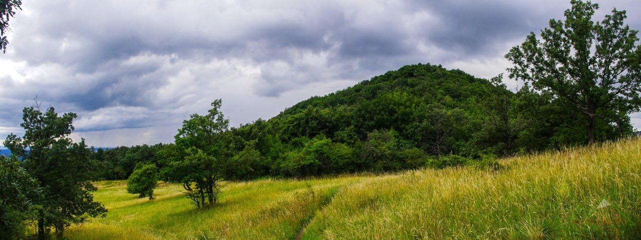 Nagy-Sas-hegy